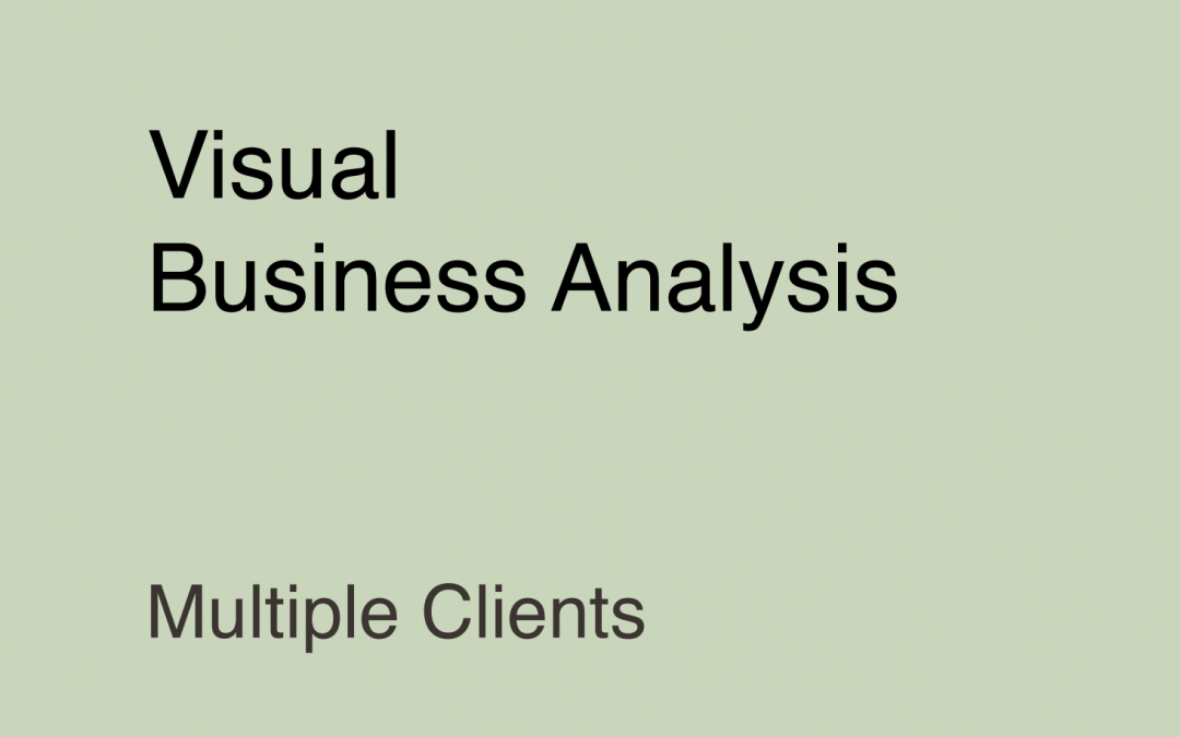 Visual Business Analysis